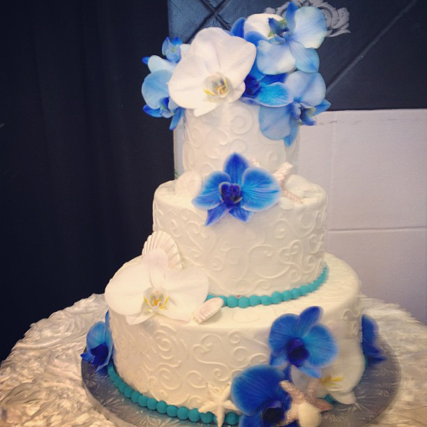 Blue and White Flowers on Cake