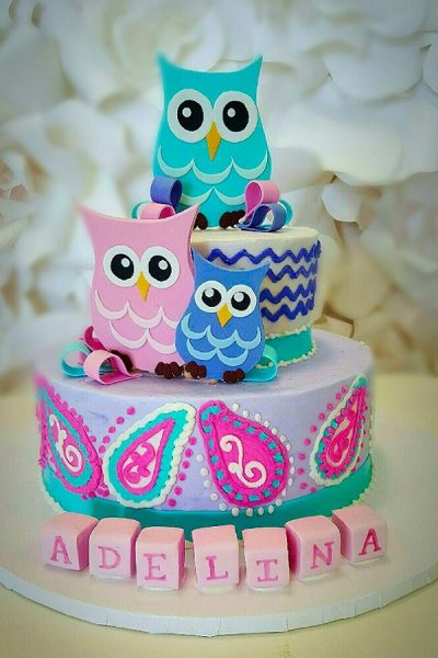 owl-themed-birthday-cakes_johnsons-custom-cakes